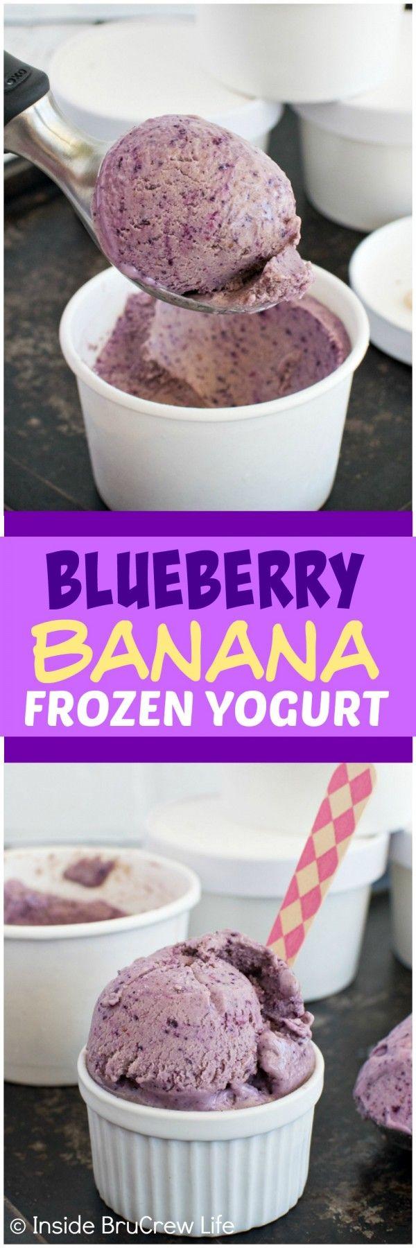 Frozen Yogurt - frozen fruit and yogurt make this healthy frozen ...