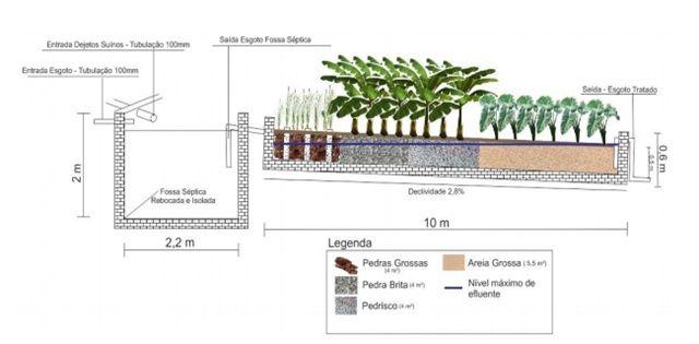 Engenheiro cria sistema natural para tratar esgoto. Acesse o Pensamento Verde e fique por dentro de tudo sobre meio ambiente e…