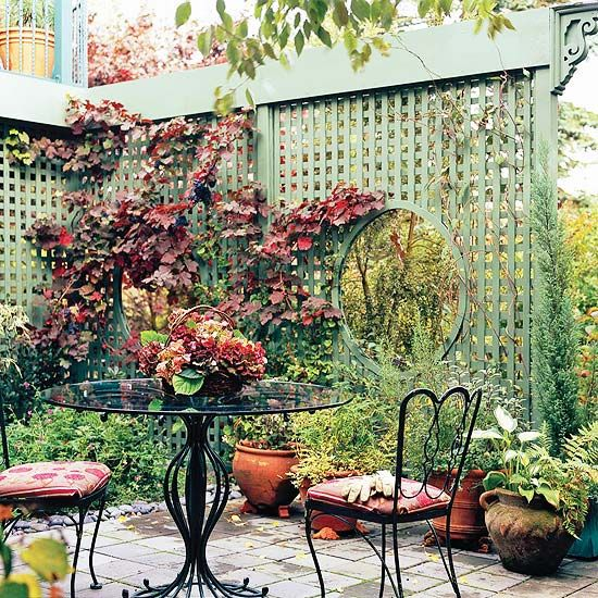 Best 25+ Privacy Trellis Ideas On Pinterest | Privacy Plants, Garden  Privacy Screen And Garden Privacy