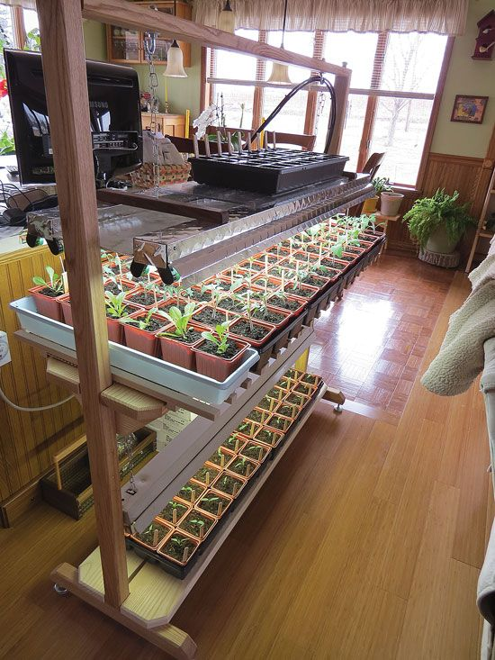 """Seed Starting: Easy Setups for Home Gardeners"" From MOTHER EARTH NEWS magazine"