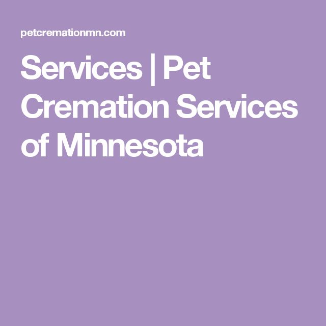 Services   Pet Cremation Services of Minnesota
