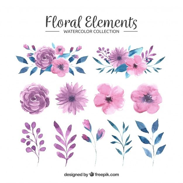 Download Floral Elements Collection In Watercolor Style For Free