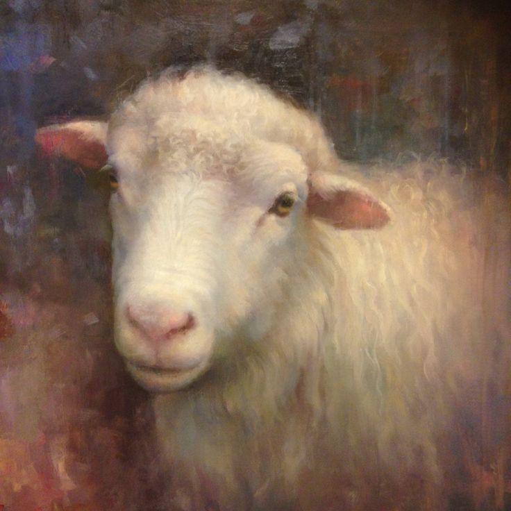 Portrait of a sheep