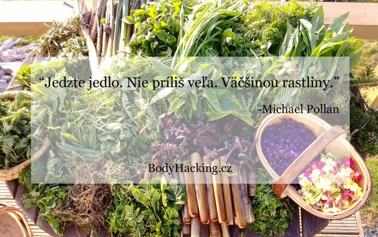 """""""Jedzte jedlo. Nie príliš veľa. Väčšinou rastliny"""" -Michael Pollan"""