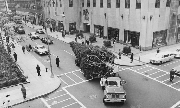 Rockefeller Center Christmas trees are transported to the plaza using a special trailer, but the narrow streets mean any tree taller than 100 feet can't make the journey. Read more about it here!