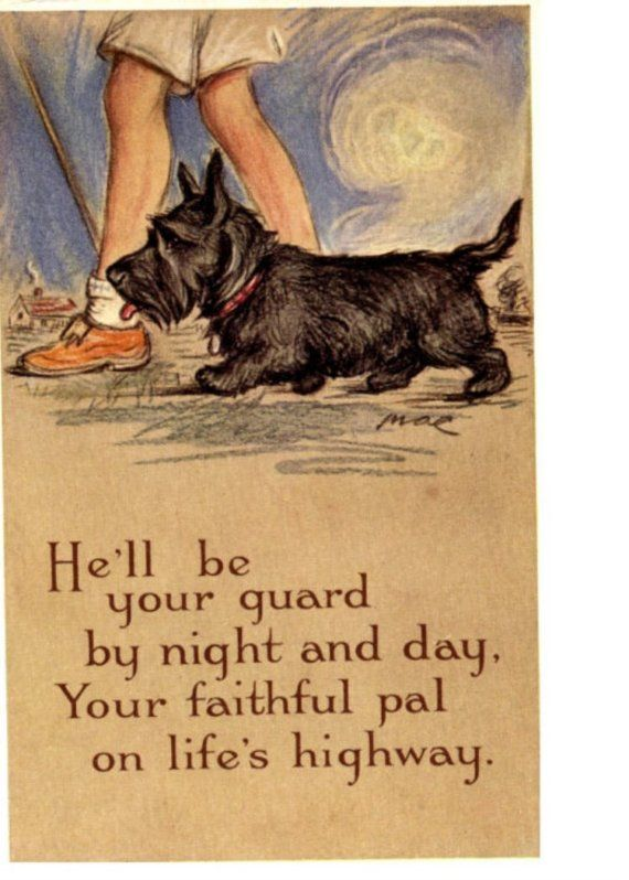 Scottie Will Be Your Guard Life s Highway Scottie Dog Magnet Scotty Scottish Terrier and Boy Walking. $10.00, via Etsy.