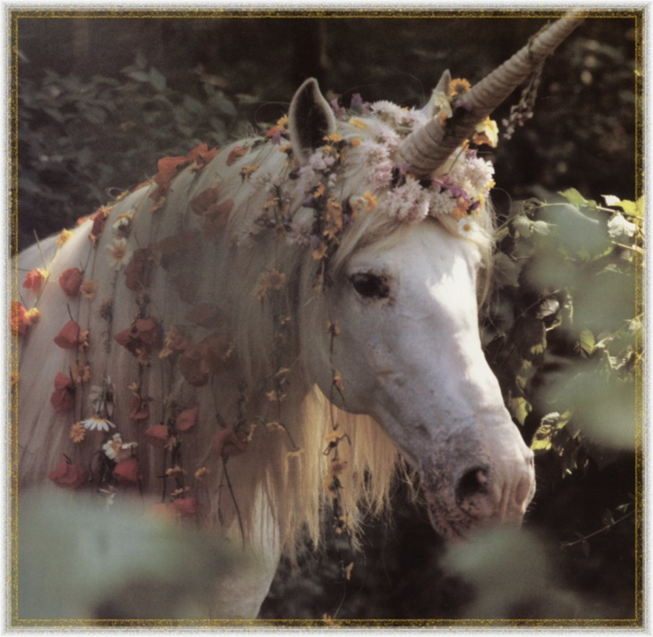 Unicorn .... The National Animal of Scotland  ( pssst don't tell Nessie ! )