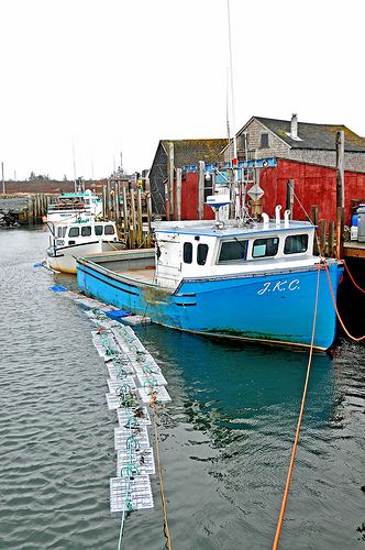 17 best images about lobster boats on pinterest boat for Fishing store portland