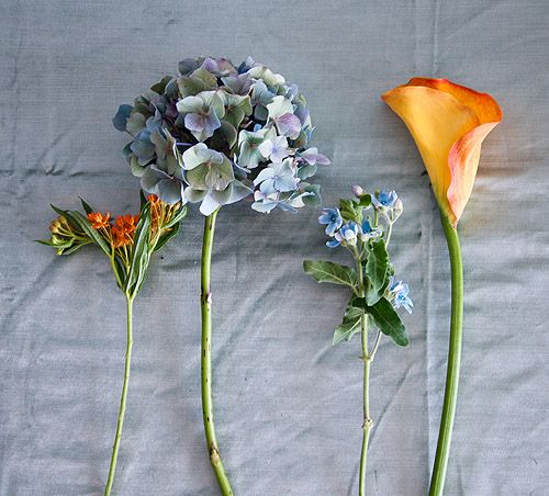 Design*Sponge, Sound Garden: Pictured from left to right: asclepia, hydrangea, tweedia, calla lily