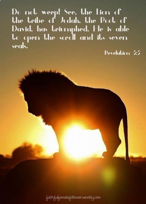 #bible #bible verse #Lion of Judah #triumph quote #daily devotional #seven seals #revelation #Jesus #God's promise #redemption