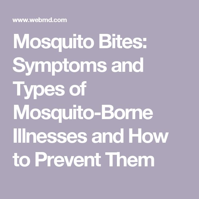 Mosquito Bites: Symptoms and Types of Mosquito-Borne Illnesses and How to Prevent Them