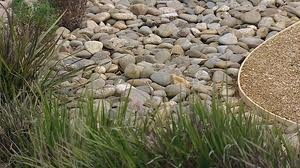 australian coastal garden - Google Search