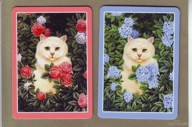 playing cards with pictures of cats on | 1226 PRETTY CATS & FLOWERS Swap/Playing Cards | quicksales.com.au ...