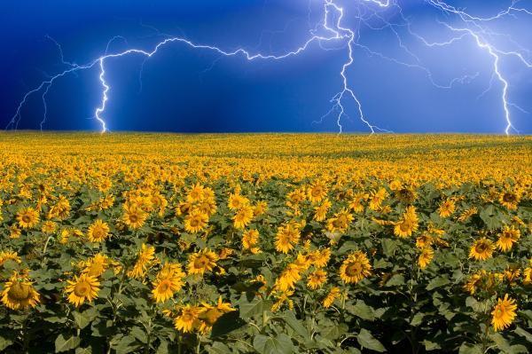 167 best Lightning Storms Fine Art Striking Photography Prints ...
