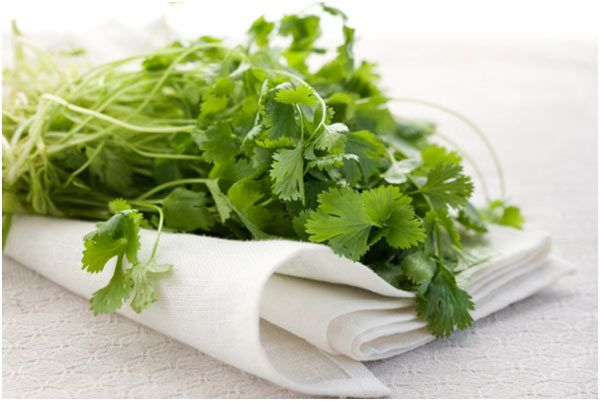 Best Benefits Of Cilantro For Skin, Hair And Health