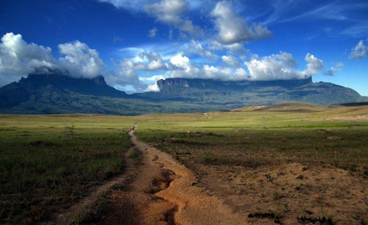 Road into Mt. Roraima Landscape