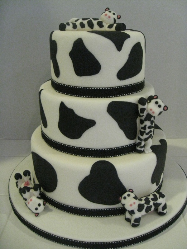 Cow cake super cute!! Add a graduation cap on the top and it'd be the perfect graduation cake haha