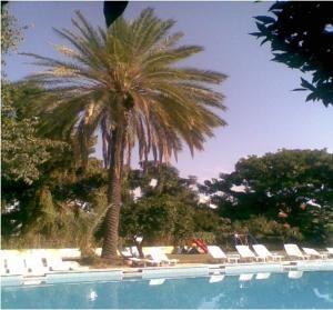 #Otel #Oteller #OtelRezervasyon - #Antalya, #Kemer - Korient Otel Kemer - http://www.hotelleriye.com/antalya/korient-otel-kemer -  Genel Özellikler Bar, 24-Saat Açık Resepsiyon, Bahçe, Hızlı Check-In/Check-Out, Emanet Kasası, Klima, Özel Plaj Alanı, Restoran (büfe) Otel Etkinlikleri Açık Yüzme Havuzu (sezonluk) Otel Hizmetleri Oda Servisi, Çamaşırhane, Gelin Süiti, Bisiklet Kiralama, Tur Danışma, İçecek Otomatı İnternet Bağ...