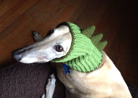 http://www.etsy.com/listing/154972852/made-to-order-dinosaur-snood-hat-for