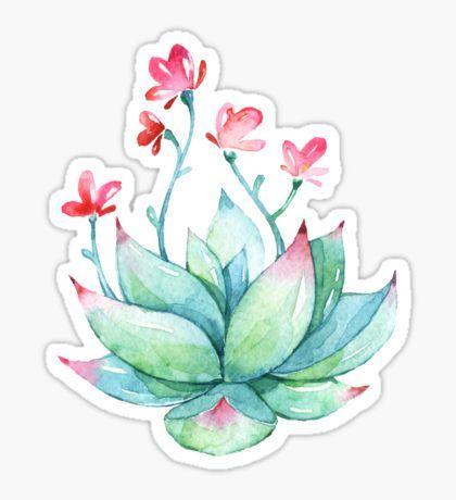 succulent sticker