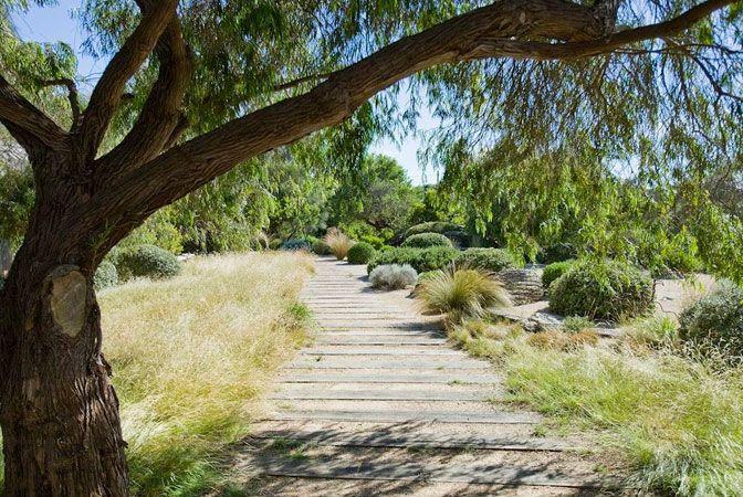 fiona brockhoff - Love this path