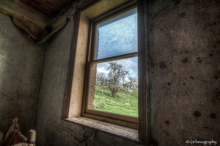 Image result for abandoned buildings windows