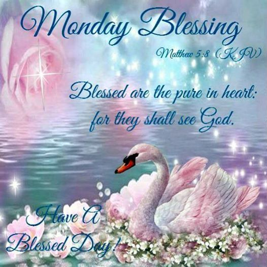 Monday Blessing = Swan
