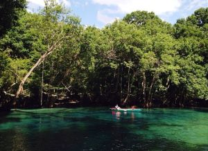 Cypress Springs, Florida. Gorgeous clear blue spring in northwest Florida that can only be reached by boat, canoe or kayak.