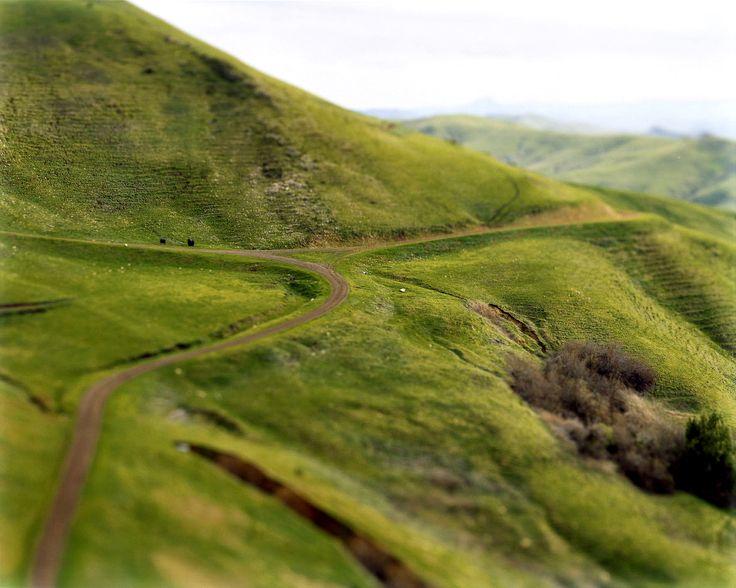 #landskab