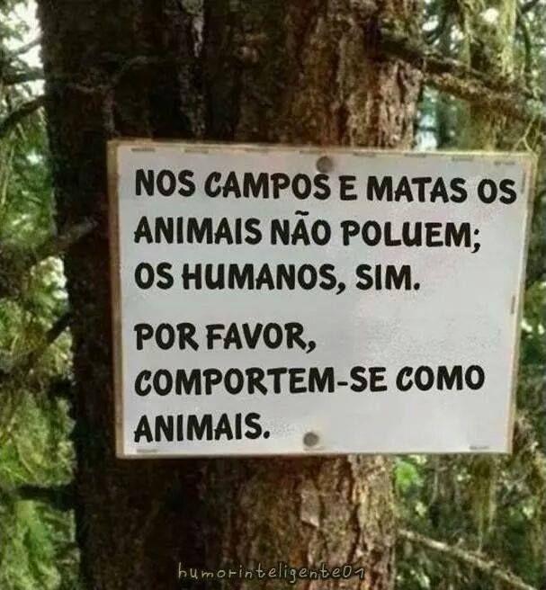 ALPA Associação Lafaietense de Proteção aos Animais  https://www.facebook.com/pages/ALPA-Associação-Lafaietense-de-Proteção-aos-Animais/423625051007155