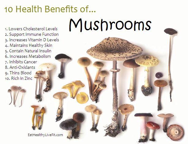 10 Health Benefits of Mushrooms.