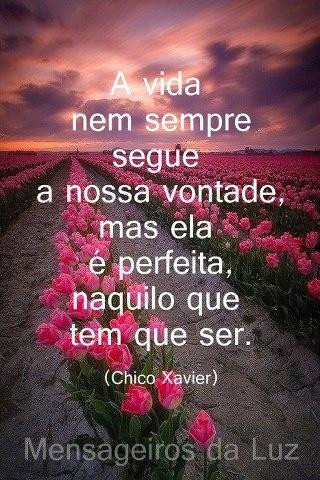 Mestre Chico Xavier