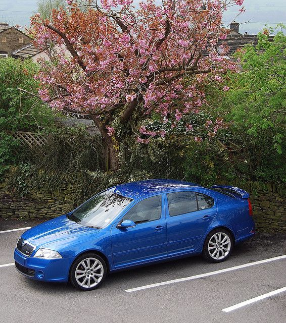 Skoda Octavia vRs in Race Blue