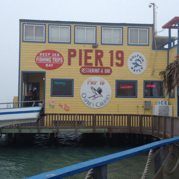 19 best south padre island texas fish images on pinterest for Deep sea fishing south padre island