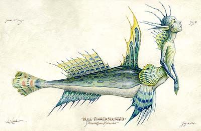"A ""Blue-Finned Seamaid"", done by Tony DiTerlizzi in 1994 for what would eventually become Arthur Spiderwick's Field Guide."