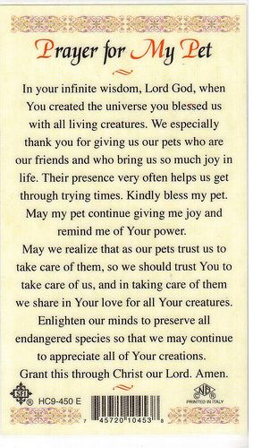 Prayer for My Pet -1 | prayers praise & love | Animal quotes, Cats, Pets