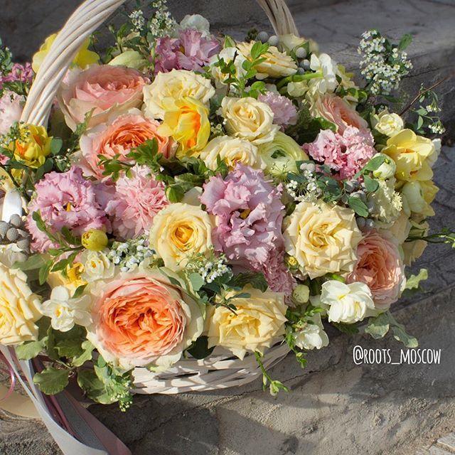 Доставляем солнечную весну по пасмурным понедельникам! ☀️ Заказ цветов, букетов и композиций roots-store.ru и 89859228318 Call/WhatsApp#roots#roots_moscow#roots_flowers#цветымосква#доставкацветовмосква#цветысдоставкоймосква#нежность#цветылюбимой#bloom#sendflowersmoscow#moscow#flowers#flower#blossom#sopretty#spring#summer#nature#beautiful#pretty#flowerslovers#botanical#flowermagic#instablooms#bloom#blooms#botanical#floweroftheday#flowersporn#flowersmood#flowerstagram