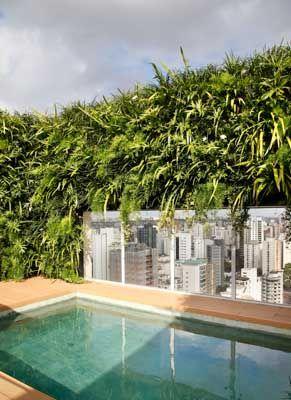 Vertical Garden Window Paredes Verdes Pinterest