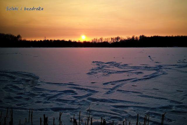 szlaki i bezdroża: Miechowicka zima