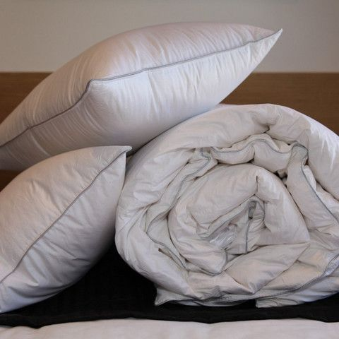 Renowned for it& 39;s sumptuously soft down, Canadian Goose Down really is the pinnacle of luxury. Our Canadian Goose Down Pillows are filled with pure goose down.