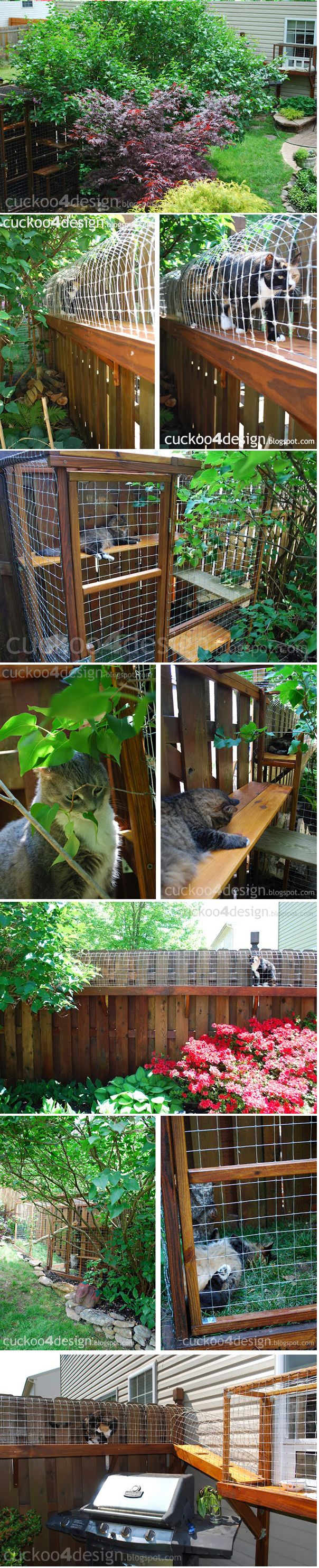 CAT ENCLOSURE.  DIY project to keep your cats safe. Definitely an interesting idea.