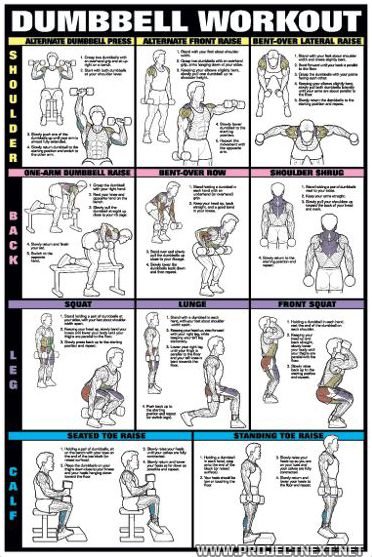 Dumbbell Workout PART 1 - Fat Burning Sixpack Abs Exercise