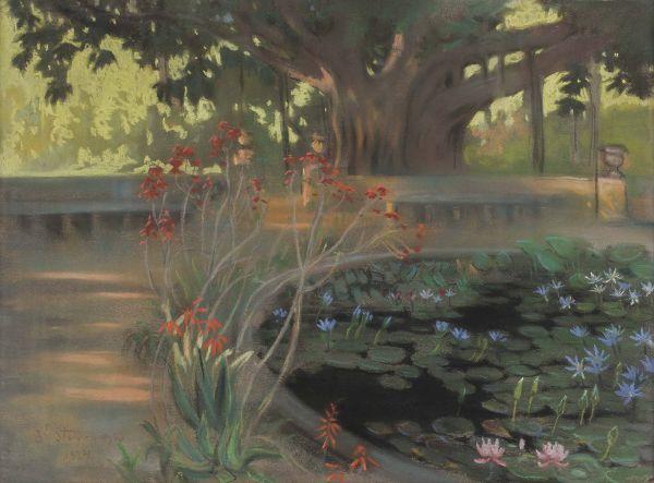 Lotosy w parku w Palermo - Kazimierz Stabrowski