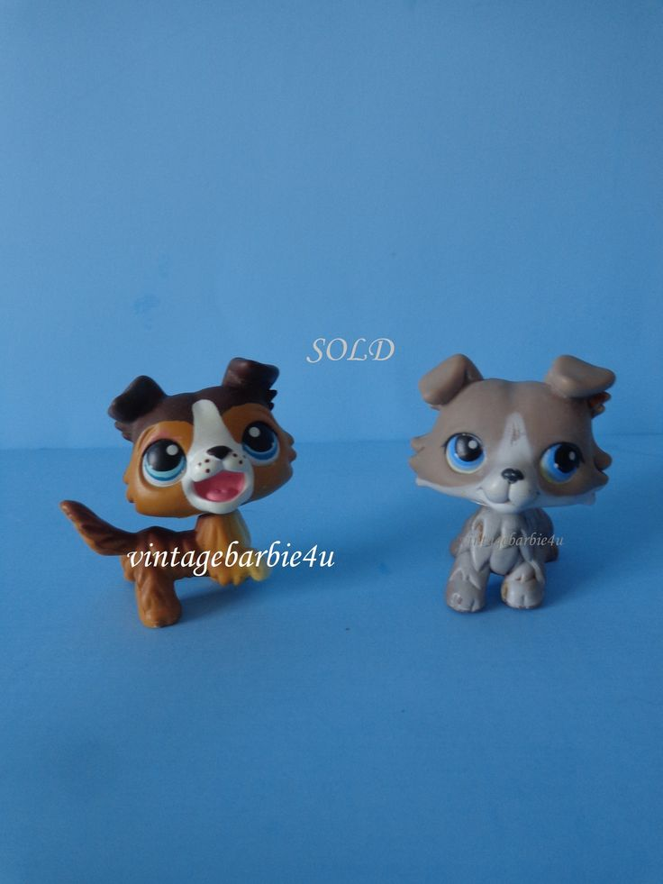 Littlest Pet Shop LPS Collie Puppy Dog Lot #67 #237 Brown Grey White Blue Eyes  #Hasbro