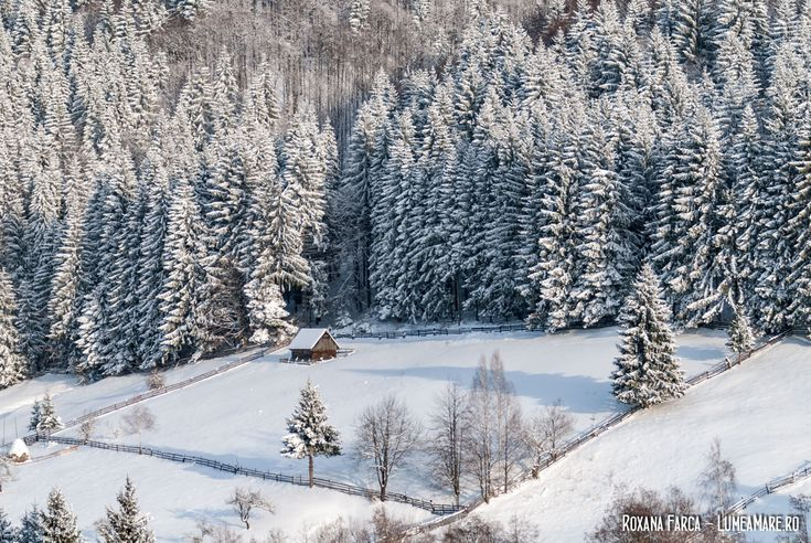 Vacanța de iarnă în România, la munte. Cel puțin 20 de idei pentru activități în aer liber.