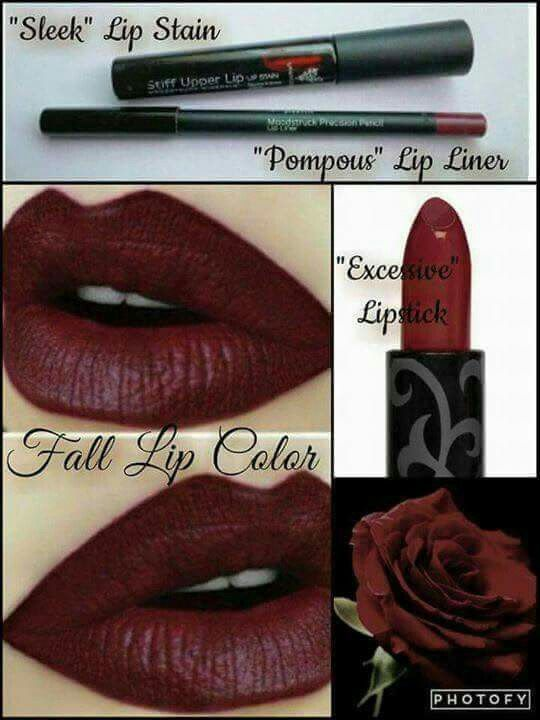 #FallMakeup this beautiful color is just a few clicks away! Get it all at www.youniqueproducts.com/SaraDreher1