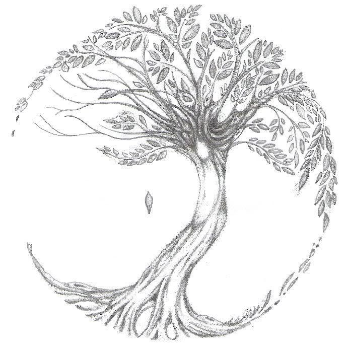 celtic ash tree tattoos | Inspiration image 0ad40a29d8dfb713b3eda34fd058cac
