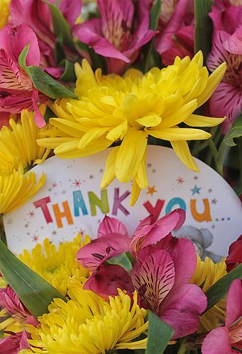 Thank you message and bright colourful fresh flowers • read the story behind the photo at Flickr • thank you, pinners