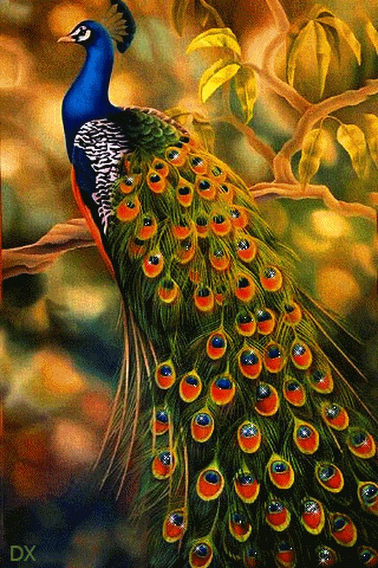 Гиф открытки птица счастья, надписью группа