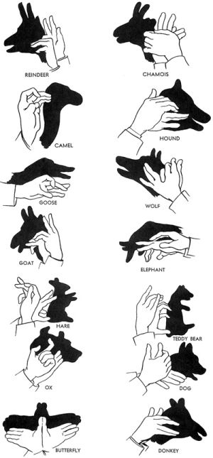 Shadow puppets- stuff to do with Collin